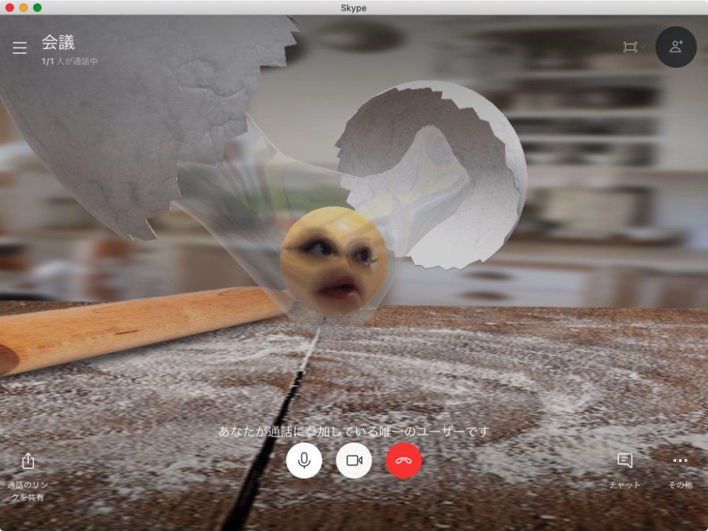 SkypeでSnap Cameraを使った状態