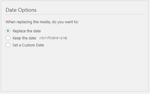 ファイル更新日(Data Options)